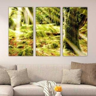 Τρίπτυχος πίνακας σε καμβά Άγρια Φύση