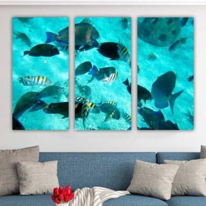 Τρίπτυχος πίνακας σε καμβά Ψάρια