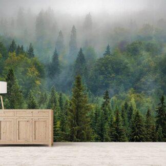 Δάσος φωτοταπετσαρία τοίχου