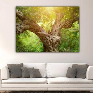 Κορμός δέντρου πίνακας σε καμβά