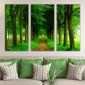 Τρίπτυχος πίνακας σε καμβά Πράσινο Μονοπάτι