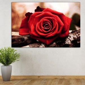 Red Rose πίνακας σε καμβά