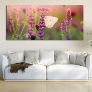 Πανοραμικός πίνακας σε καμβά Butterfly Spring