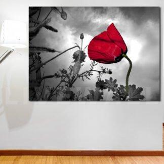 Πεταλούδα με μωβ ανθάκια πανοραμικός πίνακας σε καμβά