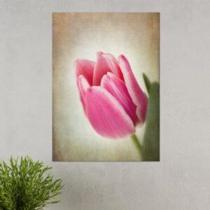 Πίνακας σε καμβά Vintage Flower