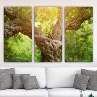 Τρίπτυχος πίνακας σε καμβά κορμός δέντρου