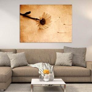 Μαργαρίτα Σέπια πίνακας σε καμβά