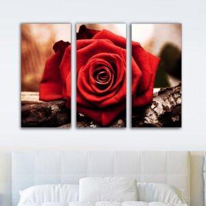 Τρίπτυχος πίνακας σε καμβά red rose