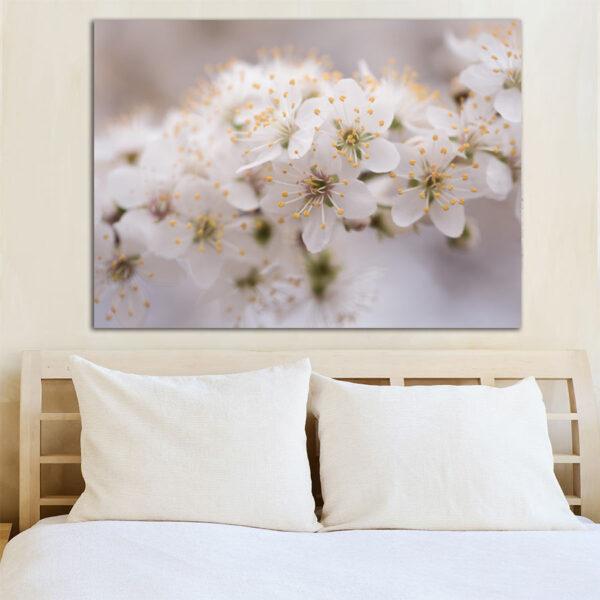 White blossom πίνακας σε καμβά