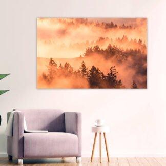 Πίνακας σε καμβά Forest morning